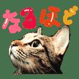 トラと三郎の日常 日本語編