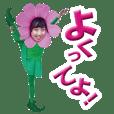 こすもす子~コスモスの妖精