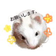 ferret Sticker2