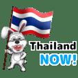 สำหรับคนที่รักประเทศไทย2