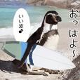 1173(いい波)サーフィン、ペンギンさん