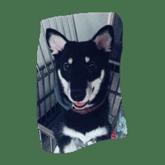 Happy Miru LINE Stickers