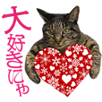 reo&Quu CAT LOVE Sticker