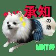 関西風【mint】ヒナちゃんフレンドシリーズ