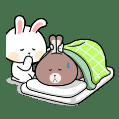 Funny Bunny Love