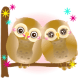 Wonderful Owls 2