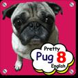 Pretty Pug! 8