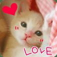 LOVEはなちゃんスタンプ