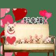 Family Yuan