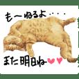 cha  cha CAT stamp