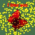 蝶の世界~愛を込めて~