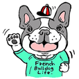 French Bulldog Life in Japan