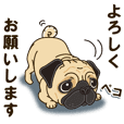 A sticker willingly. Pug your compassion