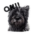 Cairn terriers' yappity yap