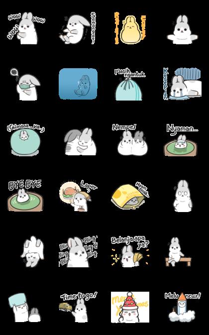 Machiko Rabbit: Too Cute