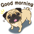 A sticker willingly. Pug 4 (English)