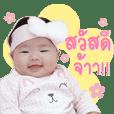Nhu NETA V.2