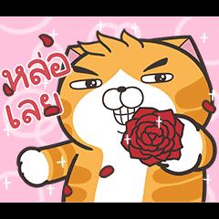 Lan Lan Cat: Moving Moving