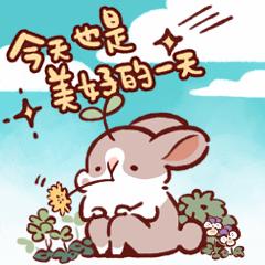 肥兔寶 大貼圖