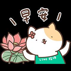 LINE購物護照★J.HO 貓貓生活