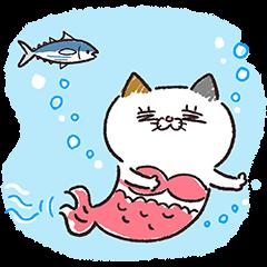 夏も元気に!タマ川ヨシ子(猫)第24弾