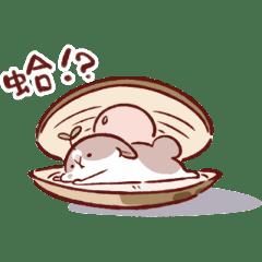 肥兔寶 - 動感系兔子 2