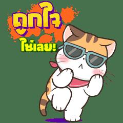 Soidow Cat 5