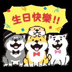 SHIBANBAN微笑柴犬-五週年貼圖