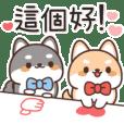 Shibainu Twins: Reactions