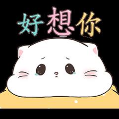 寶寶小胖貓 2