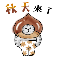 Nyansuke懶洋洋喵之助-秋季篇