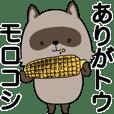Mr. racoon dog 2