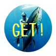 spearfishing!