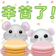 Macaron Mouse,Traditional Edition