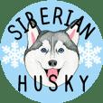 Siberian Husky motion Sticker -English