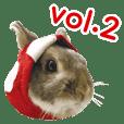 Kinoco rabbit vol.2