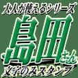★島田さん専用★大人が使うシリーズ