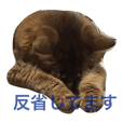 ねこねこスタンプ(日常系)
