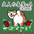 大人春柴っち(敬語編)
