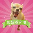 DOG SAY 2