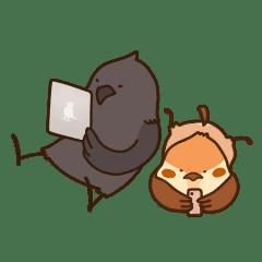 雀雀子與烏君