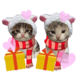 猫にゃ・にゃ・にゃ!part7