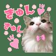 可愛いルーシー姫*④