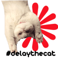 Delay and the Ghost Cats