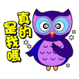 Owl small blue