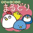 Little Chubby Birds