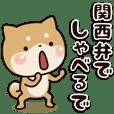 Shibainu[Kansai dialect]