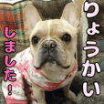 French bulldog KOMUGI Sticker 3