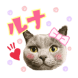 lunachan stamp