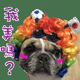 French Bulldog Fat bubble 2